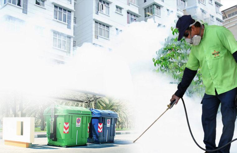 Avoiding Ants, Flies And Wasps at BBQs And Picnics