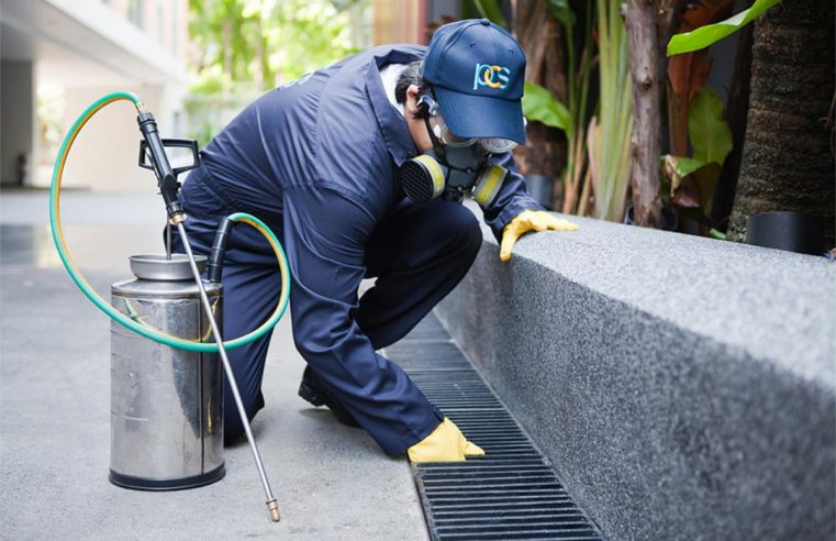 Contemplate a Few Elements Earlier than Selecting an Industrial Pest Management