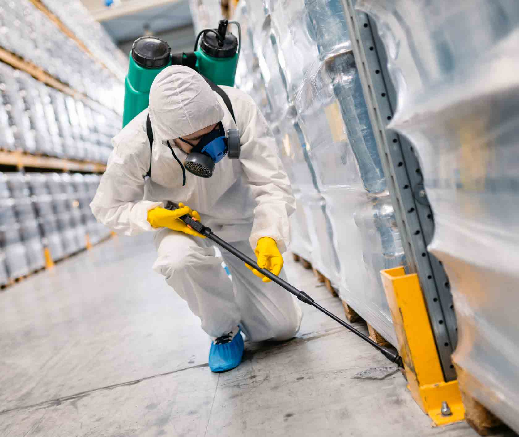 Quick Eradication Of The Pests By The Pest Management Sydney For A Wholesome Life