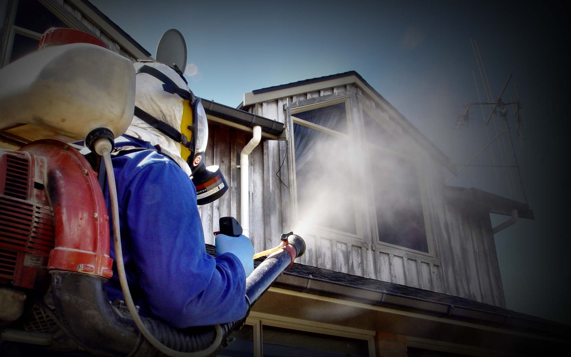 How to Obtain Affordable Pest Inspection Services
