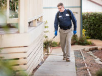 Make Your Life Through Profitable Earning In A Pest Control Company