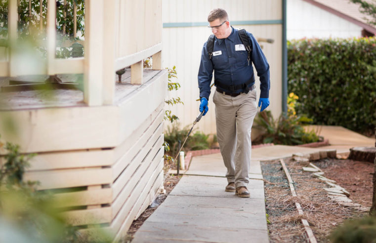 Make Your Life By Worthwhile Incomes In A Pest Management Firm