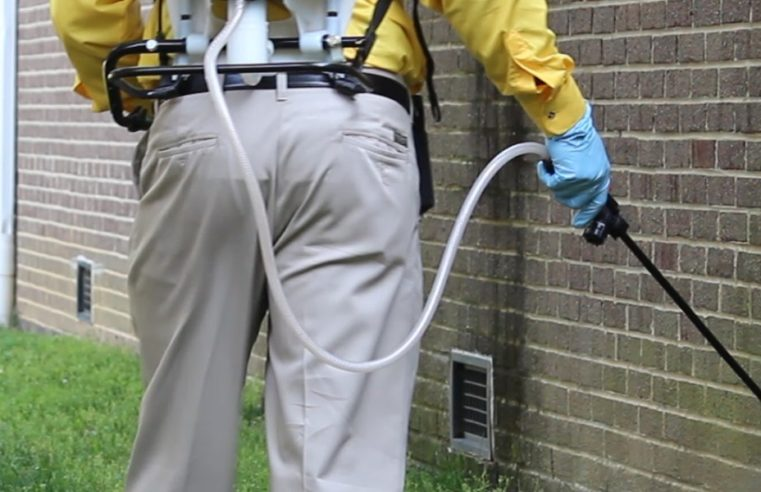 Sugar Land Pest Management Companies and Accessible Applied sciences