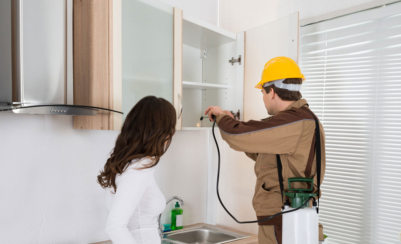 What to Search for in Pest Management Companies in NJ?