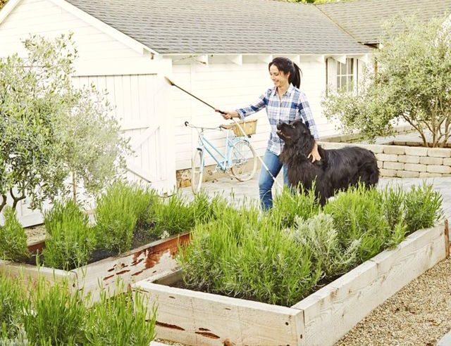 3 Great Tips for Creating a Backyard Full of Family Fun