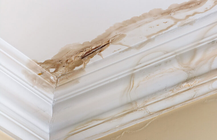 4 Ways To Safeguard Your Home From Water Damage