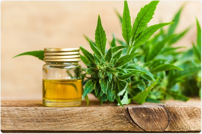 How cbd gummies for sale is a boon for us?